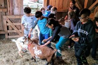 montessori learning outdoors