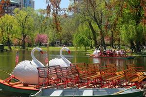 resize-swan-boats